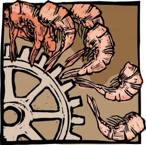 factory-shrimp